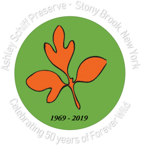 Friends of the Ashley Schiff Preserve, Stony Brook, New York